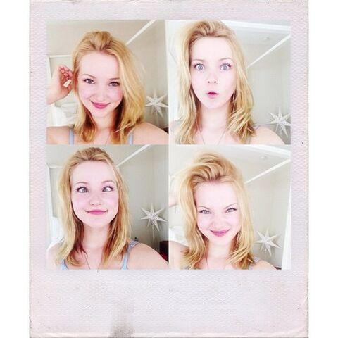 File:Dove polaroid.jpg