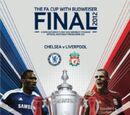 2012 FA Cup Final