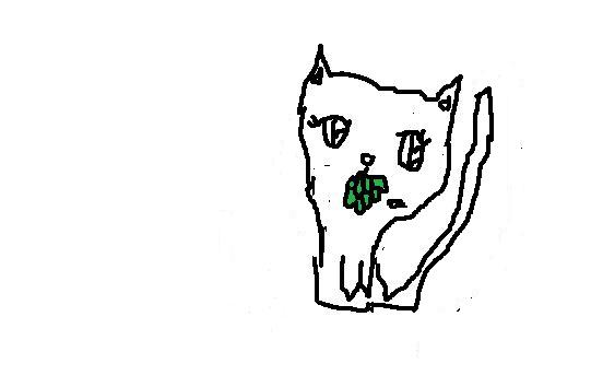 File:Med Cat App, Short-Haired, Female.jpg