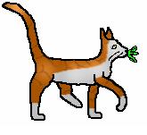 File:Leafpoolmedcat.PNG