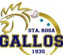Gallos de Santa Rosa