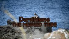 Darvinismo Main Title