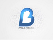 B-Channel 2011