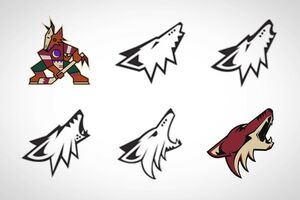 Coyotes concepts