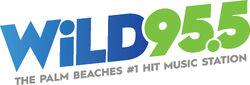 WLDI-955 Final-1
