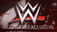 WWENetExclusive