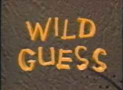 Wild Guess