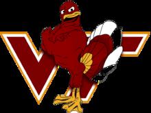 Vt logo3