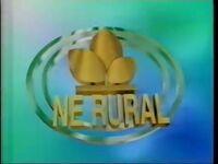 NE Rural 1998