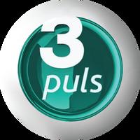 3 Puls