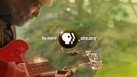 PBS 2009's 7