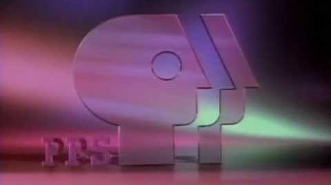 Public Broadcasting Service ident (1993)