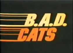 B.A.D Cats Intertitle