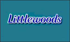 File:1066781 littlewoodsgrab300.jpg