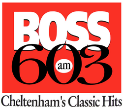 Boss 603 1995