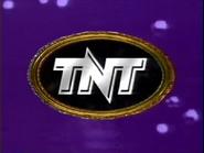 Tntid19933