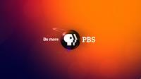 PBS 2009's 4