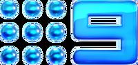 Nine2012 Glossed Logo