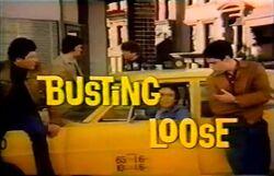 Busting Loose Opening Title Adam Arkin 1977-500x321