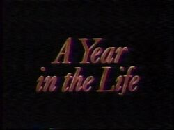 Year in the Life II (2)