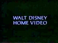 Walt Disney Studios Home Entertainment Logo 1995 Walt Disney Home Video