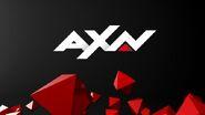 AXNIdent2015V2