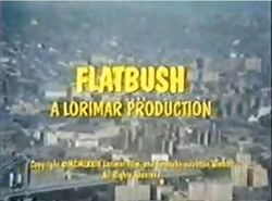 Flatbush-show