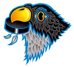 Springfield Falcons 1994-2003