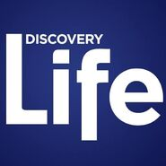 Discovery Life 2016