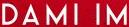 Dami Im Fighting for Love logo