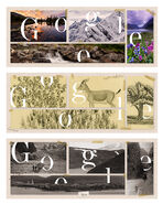 Google Russian Geographical Society's 170th anniversary (Storyboards)