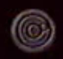 Screen Bug 2003