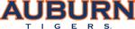 3021 auburn tigers-wordmark-2004