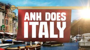 Anh Does Italy logo