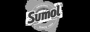 Agentur kunden logo Sumol 50596f4482c5fc9fcb990ae675794890