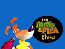 The moxy show-show