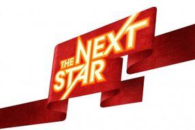 Thenextstar logo-e1279802552928