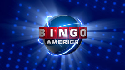 --File-bingo mikefix.jpg-center-300px--