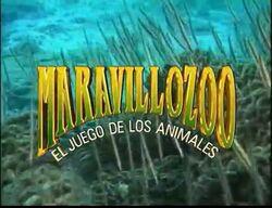 Maravillozoo El Juego de Los Animales