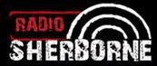 RADIO SERBORNE (2011)