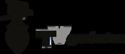 Tv gaucha 1962