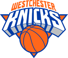 7724 westchester knicks-primary-2016