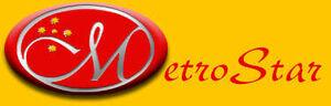 Metrostar 2001