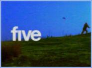 FiveKiteFlying2002
