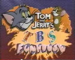 Tom & jerry's fun house