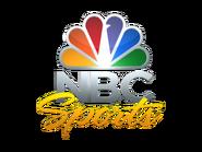 Nbcs logo vertical