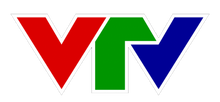 VTV 2008-2013 logo