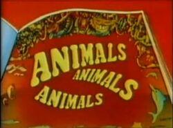 Animals Animals Animals