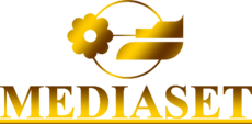 First mediaset logo