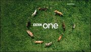 BBC1-2008-ID-DOGS-1-6